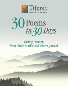 2016 Poem Prompts cover